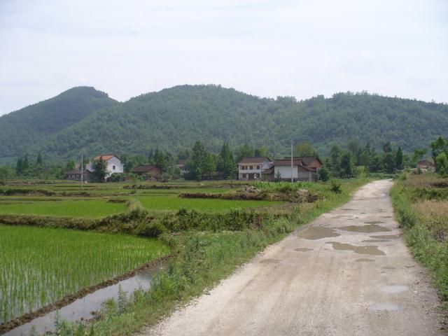 hanzhong019