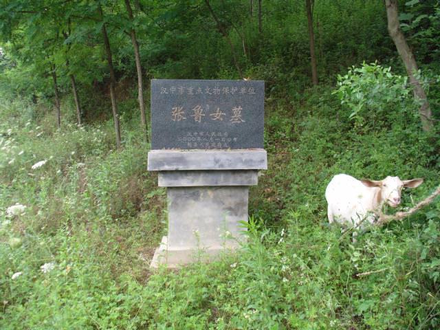hanzhong022