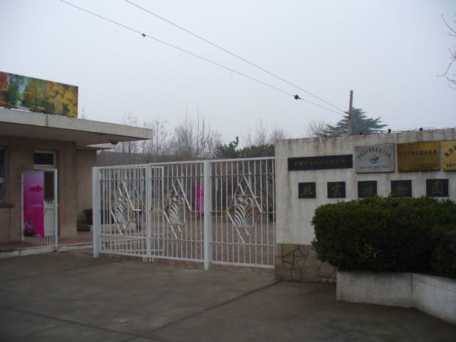 beijing161