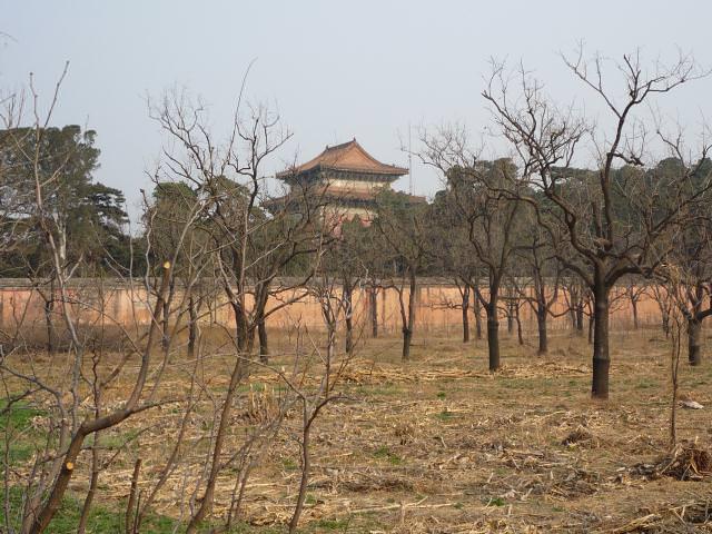 beijing2009_072