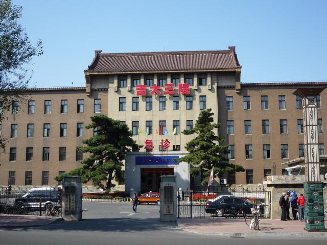 dongbei_301