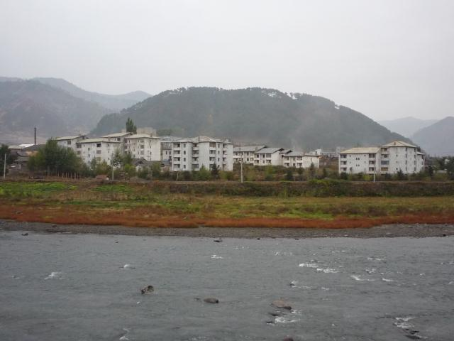 dongbei_361