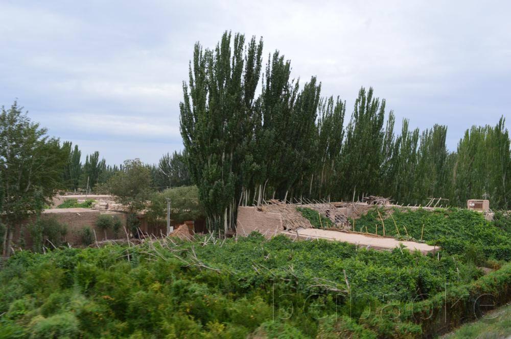 sichouzhilu2012_037
