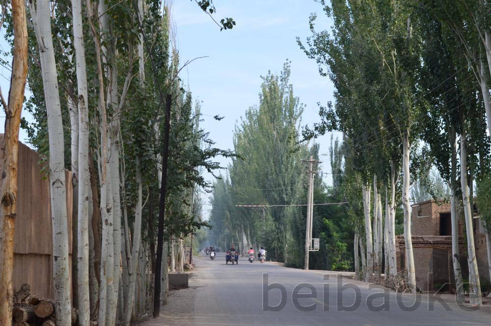 sichouzhilu2012_061