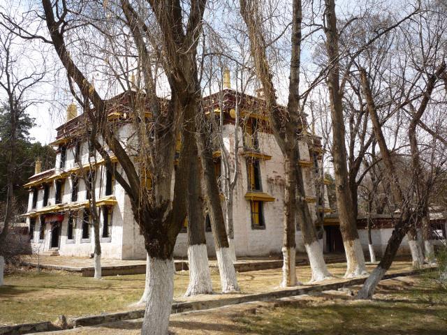 tibet_239