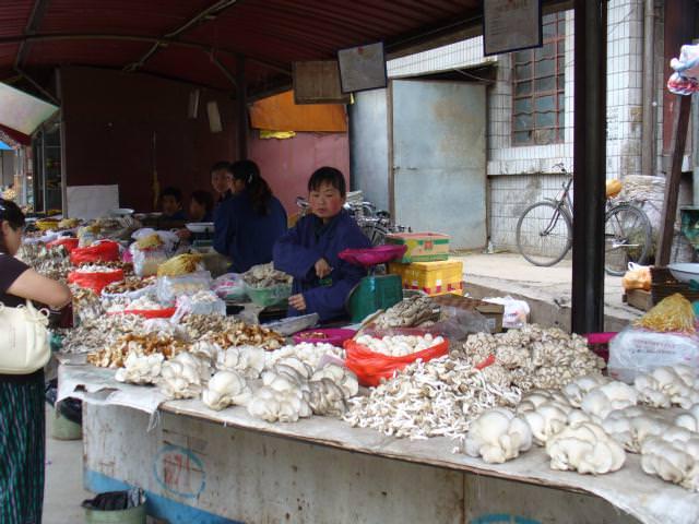 tibet_bunkaken039