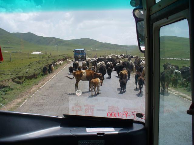 tibet_bunkaken104