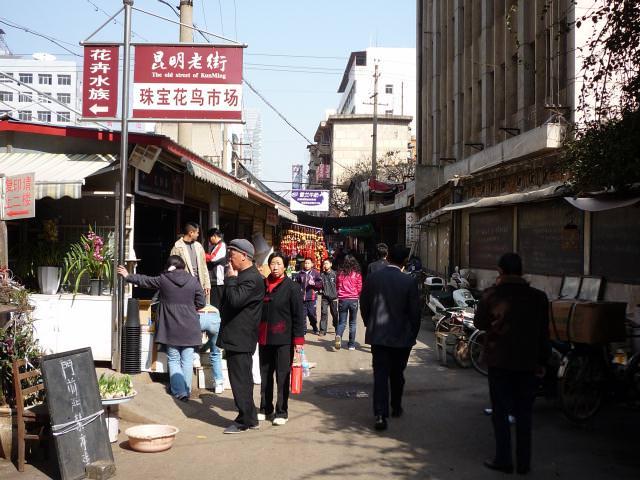 yunnan4_157