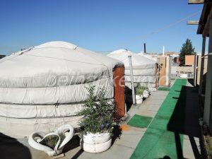 mongolia-hotel005