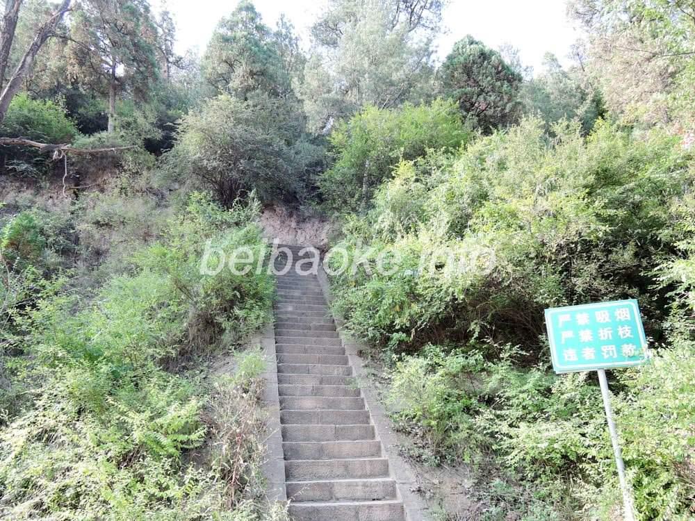 東岳廟登山階段