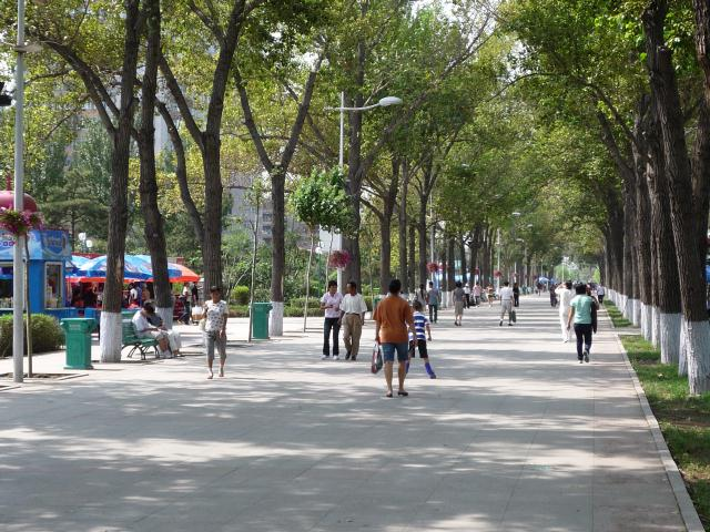 dongbei_036