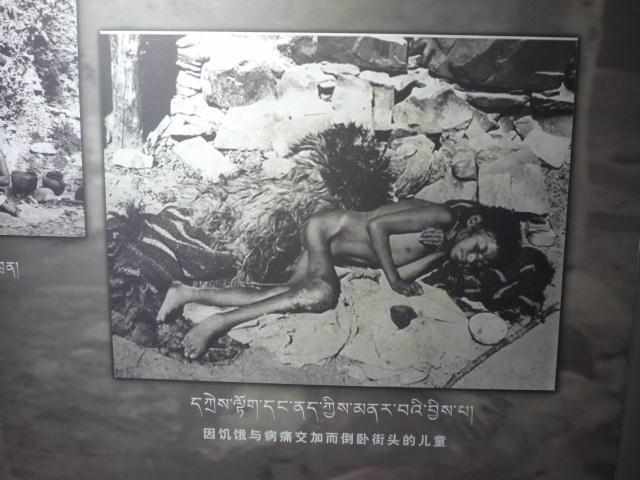 tibet_245